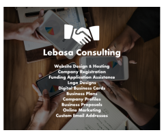 we offer consulting business services
