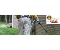Pest Control Pros (Pty) Ltd