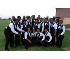 Waiters for Hire Fast Service
