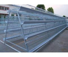 Chicken cages for broiler chicken and other birds
