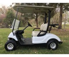 YAMAHA 2014 m model golf cart