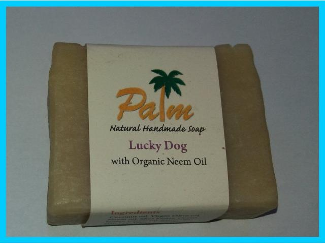Palm Dog Shampoo Bar - 1/1