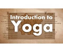 Beginners Yoga Workshop