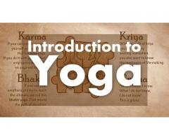 Beginners Yoga Workshop
