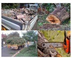 RUBBLE REMOVAL, TREE FELLING, DEMOLITION, SITE CLEARANCE