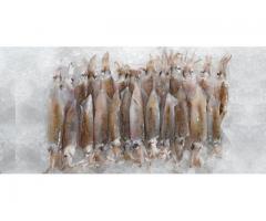 Fresh Frozen Seafood for Sale - prawns, shrimp, langoustines, crab