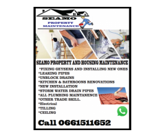 Plumbing services, roofing repairs, all house maintenance services