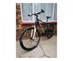 Titan Expert 29er Mountain bike for sale