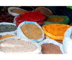 Feeds, Fruits, Vegetable, Oil Seeds, Pulses, Grains, Spices For Sale