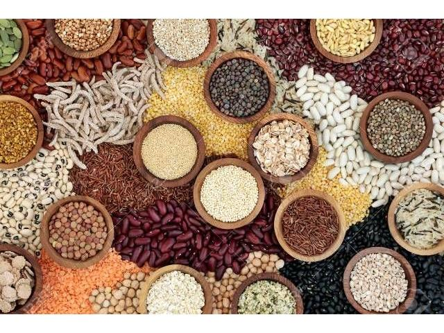 Feeds, Fruits, Vegetable, Oil Seeds, Pulses, Grains, Spices For Sale - 4/4
