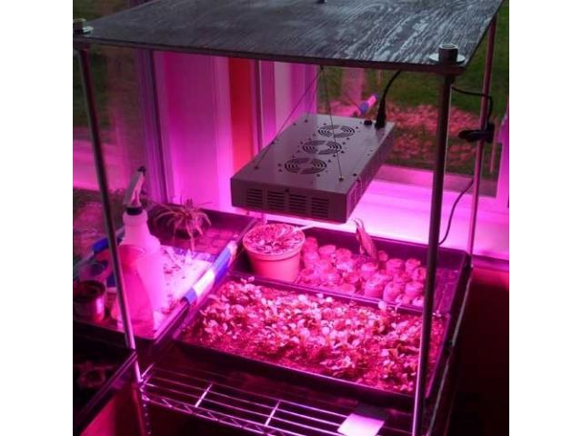 165W Full Spectrum LED Grow Light Hot Sale South Africa - 1/2
