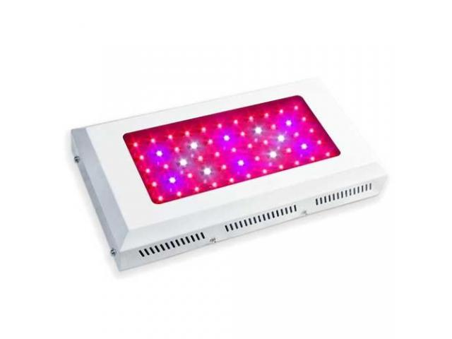 165W Full Spectrum LED Grow Light Hot Sale South Africa - 2/2