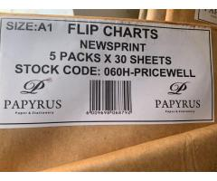 FLIP CHARTS X5 IN A PACK