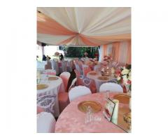 CARNATIONS AND DECORATION SERVICES CALL 0622095628