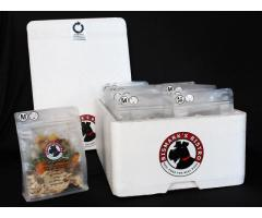 Healthy, grain free home cooked dog meals