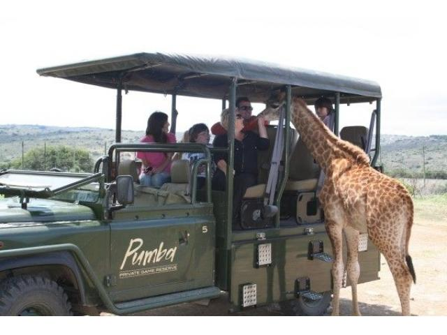Kingsview Safaris - 1/3