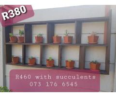 Succulent Wooden Wall Decor
