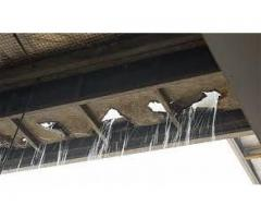 Waterproofing Renovations and Gutter Specialist