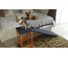 Doggie Ramps