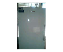 Kelinator standup freezer