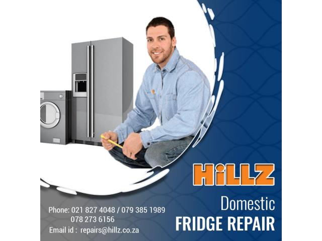 Professional Domestic Fridge Service and repairs | Hillz Refrigeration - 1/1