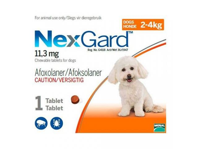 Nexgard chewables for dogs - 1/1