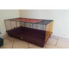 XL Rabbit/Guinea Pig/Chinchilla Hutch for sale in very good condition