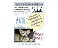 The Feral Meows need your donations of unwanted household items