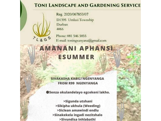 Toni Landscape and Garden Services - 2/3