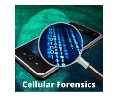 Digital Forensics - Tcgforensics | Forensics | Digital Fraud Investigations