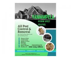 Pest control and hygiene services