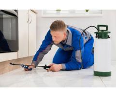 Fumigation and Pest Control Services in Gauteng