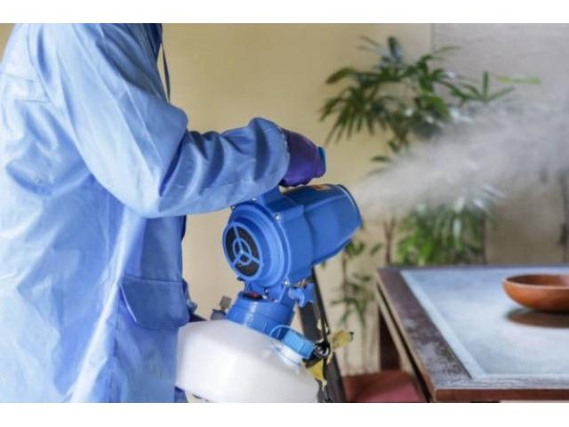 Fumigation and Pest Control Services in Gauteng - 2/2