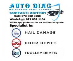 AUTO DING Paintless Dent Removal   Dent Removal
