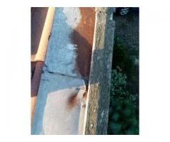 Thomas Project Solutions | Roofing Repairs | Roof Installations