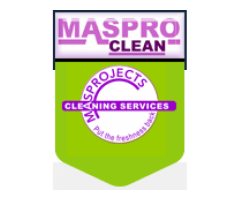 Professional Cleaning Services in Johannesburg