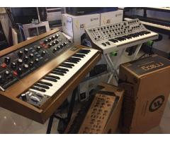 Moog Minimoog Model D Analog Synthesizer - Walnut Limited Edition